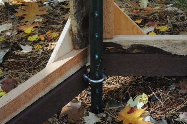 [A 2 x 4 of Trex decking is between the bottom of the wall and the ground. A 2-3 cm gap is below the Trex to allow foraging ants to enter and exit the chamber.]